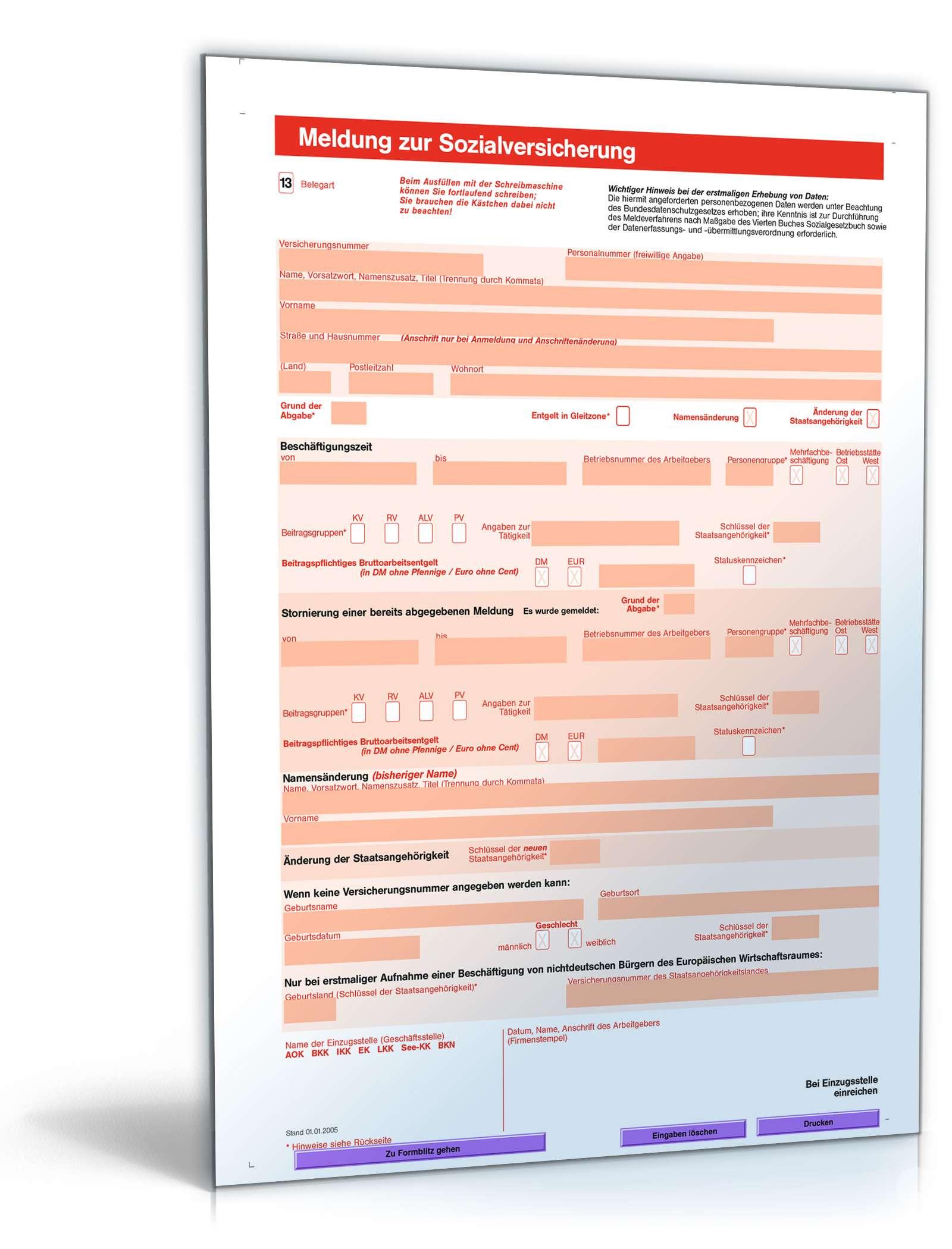 Meldung Zur Sozialversicherung Minijob Formular Zum Download